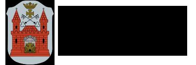 Rīgas Domes Labklājības departamenta logo